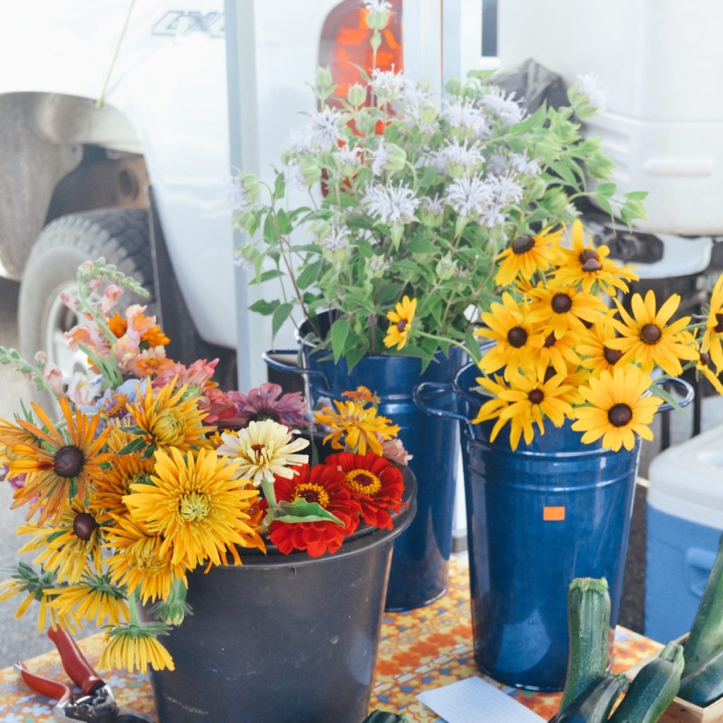 southern maine new hampshire farmers market
